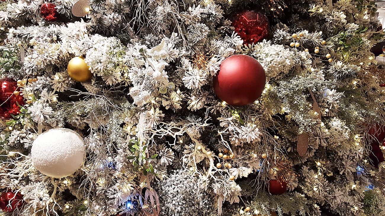 so geht man beim weihnachtsbaum kaufen clever vor. Black Bedroom Furniture Sets. Home Design Ideas